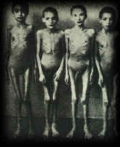 holocaust poetry prose translations art and essays holocaust children skeletons emaciated